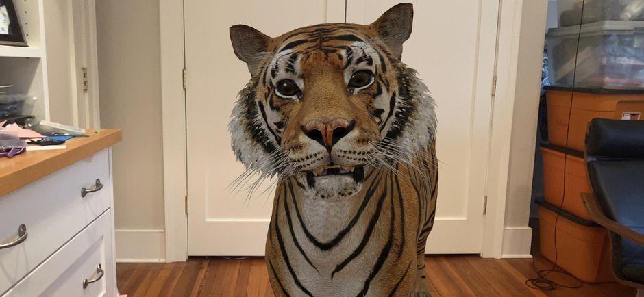3D zvieratá v Google