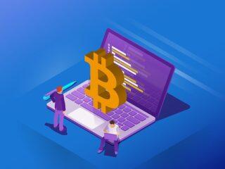 bitcoin elona muska