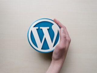 tvorba wordpress webu